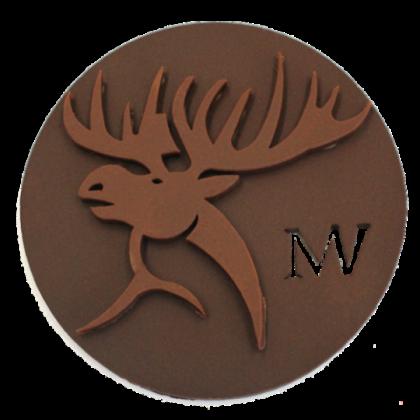 Médaille Élan